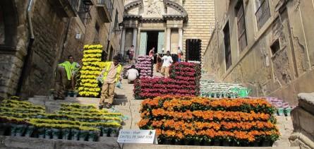 Preparatius del muntatge floral a l'escalinata de Sant Martí