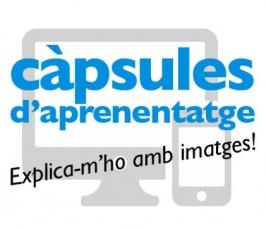 logo_capsules